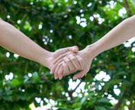 Lovers couple holding hands in a garden Royalty Free Stock Photos