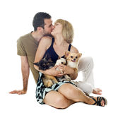 Lovers and dogs Royalty Free Stock Photography