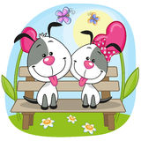 Lovers Dogs Royalty Free Stock Photo