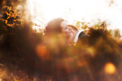 Lovers. Double portrait of happy couples in love in the forest Royalty Free Stock Images