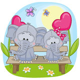 Lovers Elephants Stock Photography