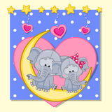Lovers Elephants Royalty Free Stock Image