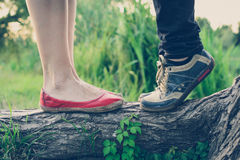 Lovers` feet on a tree branch Stock Images