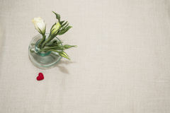 Lovers. Flowers in a glass vase for your favorite and red heart for her Stock Photography