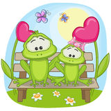 Lovers Frogs. Valentine card with Lovers Frogs Royalty Free Stock Images