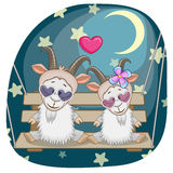 Lovers goats Stock Images
