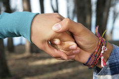 Lovers Hands. Hands of a young woman and a man in love holding each other Royalty Free Stock Photography
