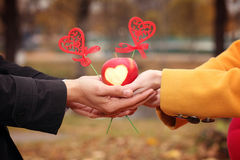 Lovers hands Royalty Free Stock Images
