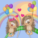 Lovers Hedgehogs Royalty Free Stock Photo