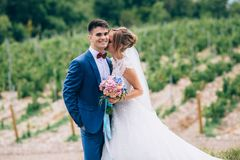 Lovers just got married and walk among the grape fields. The girl cuddles up to the man, kisses him on the neck. The guy royalty free stock image