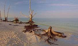 Lovers Key,Florida Royalty Free Stock Photography