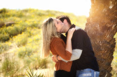 Lovers kissing in the field under a plam Royalty Free Stock Photo