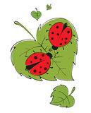 Lovers ladybugs Royalty Free Stock Images