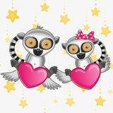 Lovers Lemurs Royalty Free Stock Images