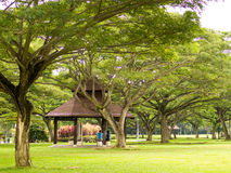 Lovers Making Up. A man and a woman having a chat while sitting under a gazebo in a public park constructed under a clump of tall lush big branching trees royalty free stock images