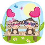 Lovers monkeys Royalty Free Stock Photography
