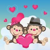 Lovers Monkeys Stock Images