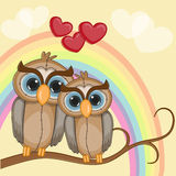 Lovers Owls Stock Photography