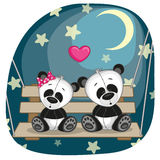 Lovers pandas Royalty Free Stock Photos
