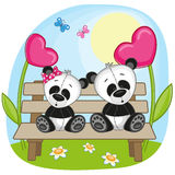 Lovers pandas Stock Photography