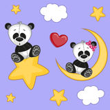 Lovers Pandas Royalty Free Stock Images