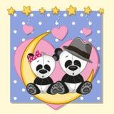 Lovers Pandas Royalty Free Stock Photo