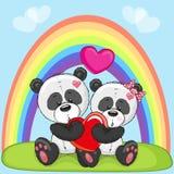 Lovers Pandas Stock Photography