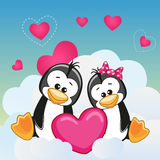 Lovers Penguins Royalty Free Stock Photography
