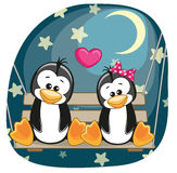 Lovers Penguins Royalty Free Stock Photos