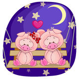 Lovers Pigs Royalty Free Stock Images