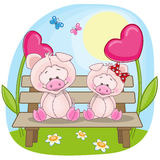 Lovers pigs Royalty Free Stock Image