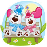 Lovers Polar Bears Royalty Free Stock Photos