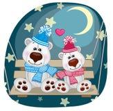 Lovers Polar Bears Stock Photo