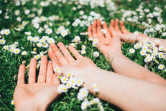 Lovers relaxing lying on spring flowers Stock Image