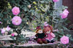 Lovers in rose garden Stock Photography