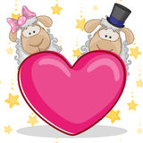 Lovers sheep Royalty Free Stock Image