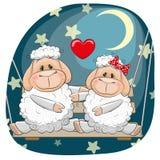 Lovers Sheep Royalty Free Stock Image
