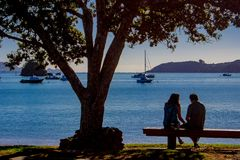 Lovers sitting on a beach side bench. In Paihia, Northland, New Zealand Royalty Free Stock Photo