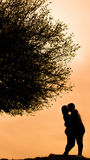 Lovers by the sun stock image