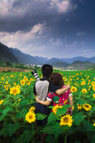 Lovers and sunflower Royalty Free Stock Images