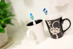 Toothbrush couple Royalty Free Stock Photos