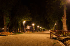 Lovers. Two lovers walking on the main alley, in Central Park, Cluj Napoca, Romania. Long exposure Stock Image