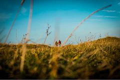 Lovers walk through Scotland. Lovers walk through the grass in Berneray in the Outer Hebrides on a beautiful cold sunny day Stock Photo