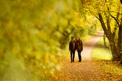 Lovers walking hand in hand  Royalty Free Stock Images