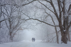 Lovers walking in the snow Royalty Free Stock Images