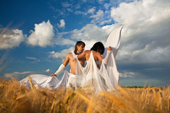 Lovers with white wings on wheat field Royalty Free Stock Photos