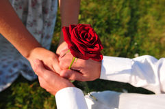 Free Lovers With Rose Royalty Free Stock Photography - 49121107