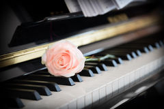 Lovesong Royalty Free Stock Photo