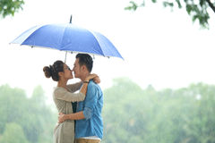 Loving Asian Couple in Rain under Umbrella Royalty Free Stock Image