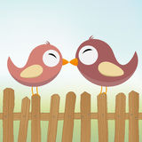 Loving birds Stock Photo